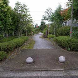 katsura_41