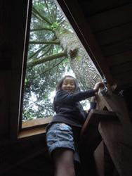 treehouse_021